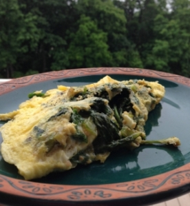 Broccoli Rabe Omelet